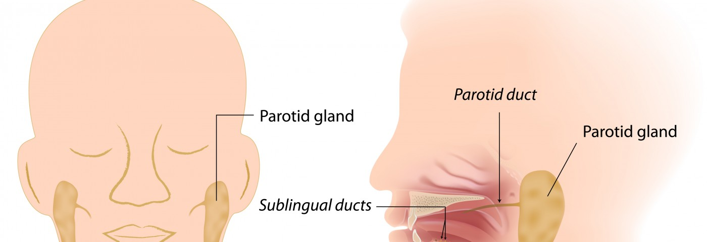 Researchers to Biopsy Submandibular Gland in Living Patients to Identify Dementia with Lewy Bodies, Parkinson's Disease