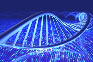 Parkinson's Patients with Common Mutation Possibly at Earlier Onset Risk if Other Gene Defect Found