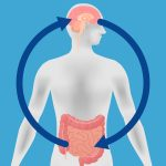 Gut-brain interaction