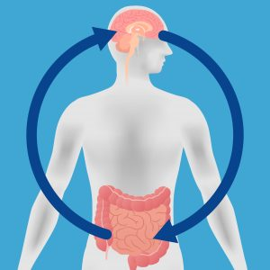 Gut Immune Response Seen to Protect Dopamine Neurons in Study in Roundworms