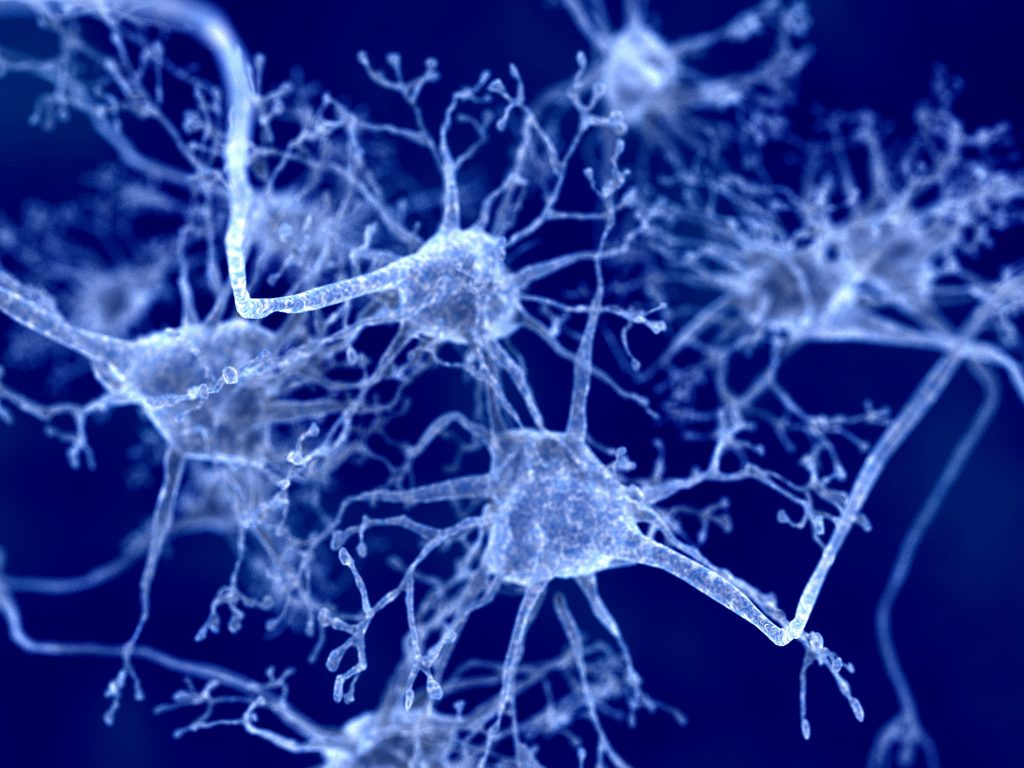 Link Seen Between 2 Key Features of Early-onset Parkinson's and PARK2 Gene