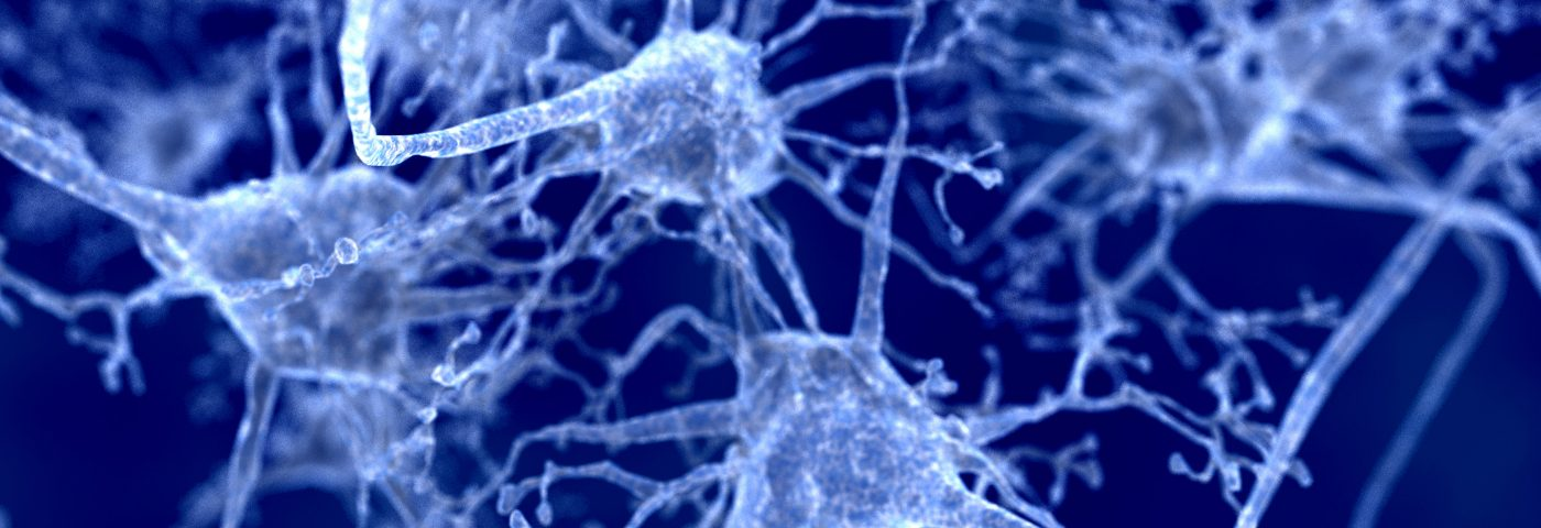 Phase 1 Study of Stem Cell Therapy for Parkinson's Getting Underway, Recruiting Patients