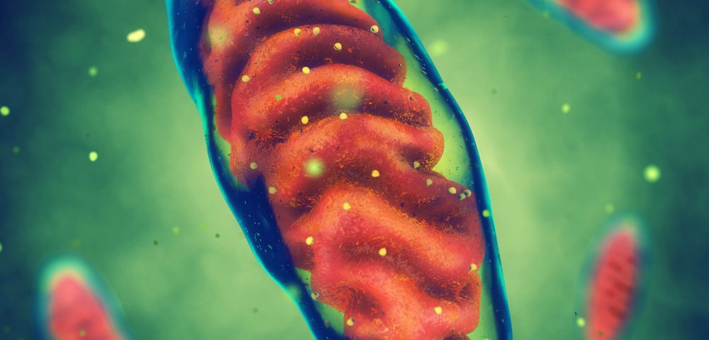 Researchers Identify Genetic 'Switch' for Mitochondrial Health in Parkinson's Neurons