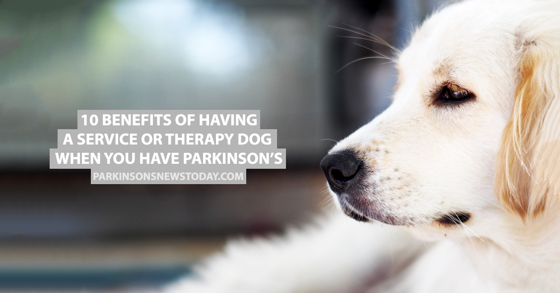 10 Benefits Of Having A Service Or Therapy Dog When You Have
