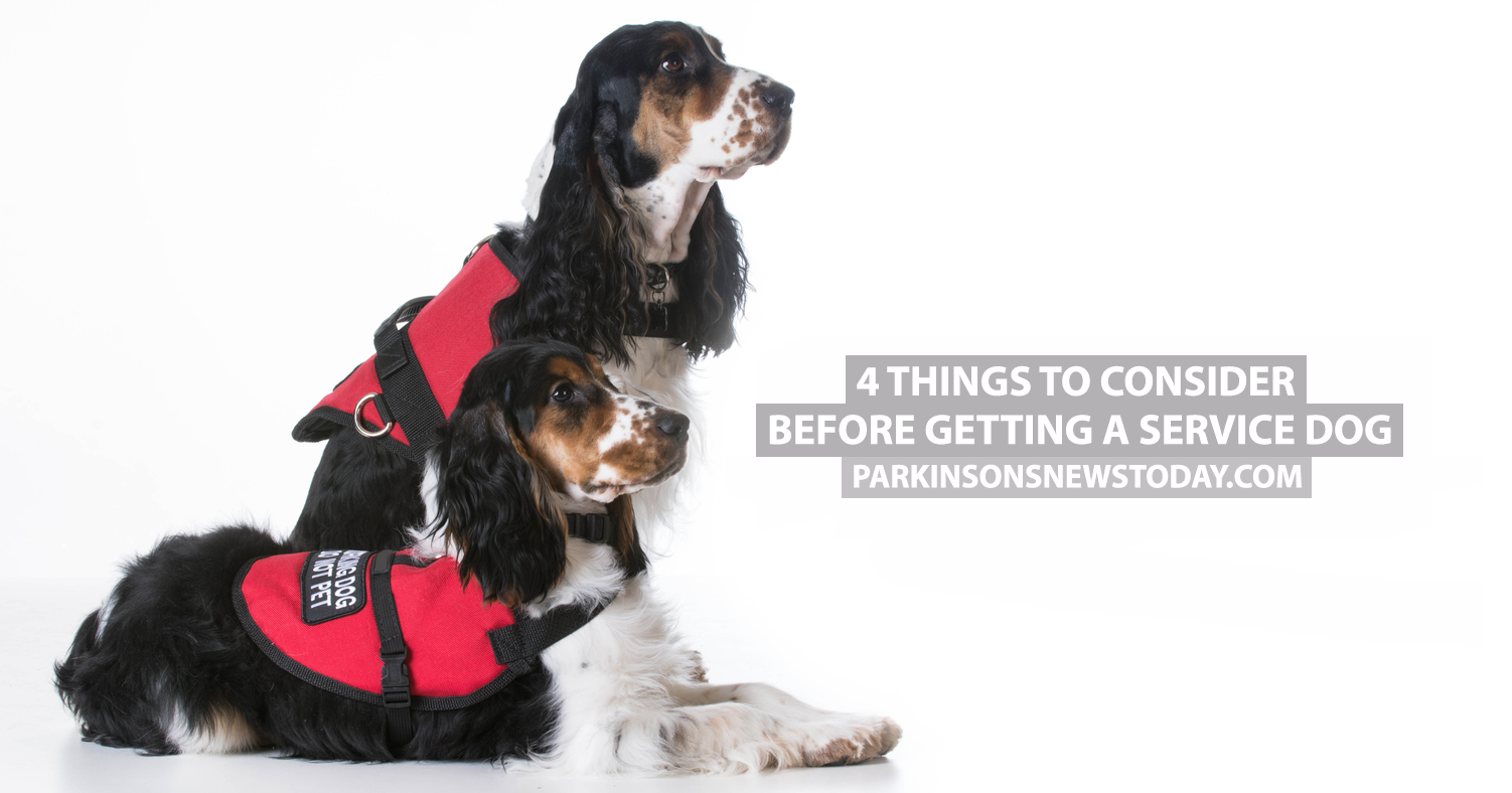 images Do You Need a Service Dog for Crohns Disease