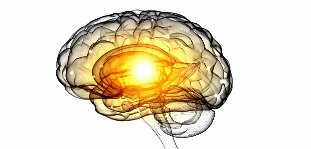Specific Area of Brain Involved in Motor Issues, Slow Thinking in Parkinson's, Mouse Study Shows
