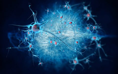 ... Brain Microglia are Key Protectors Against Prion Diseases, Study  Suggests ...