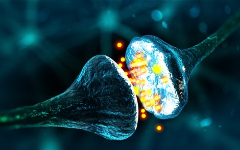 Parkinson's Researchers Unravel How Toxic Alfa-synuclein Affects Memory Nerve Cells