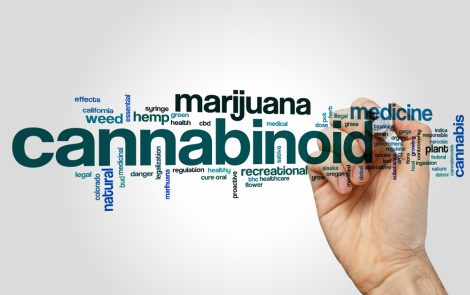 Partnership Aims to Move Cannabis-Based Treatments for Parkinson's into Clinical Testing