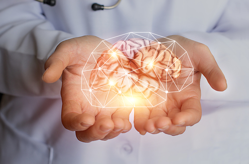 Innovative 'Mini-Brains' May Help Boost Parkinson's Research, Study Suggests