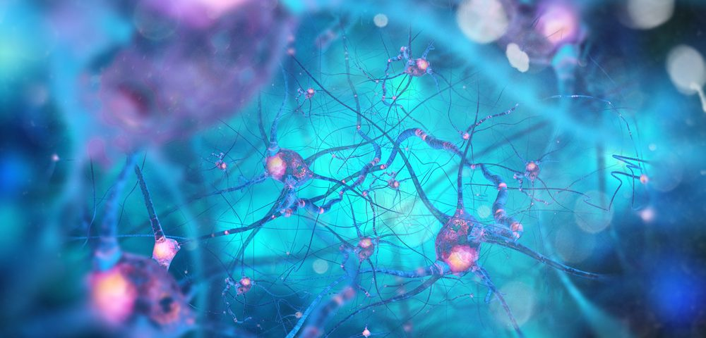 Nerve Cell Signals That Guide Movement Are Complex and Dynamic, Study Finds