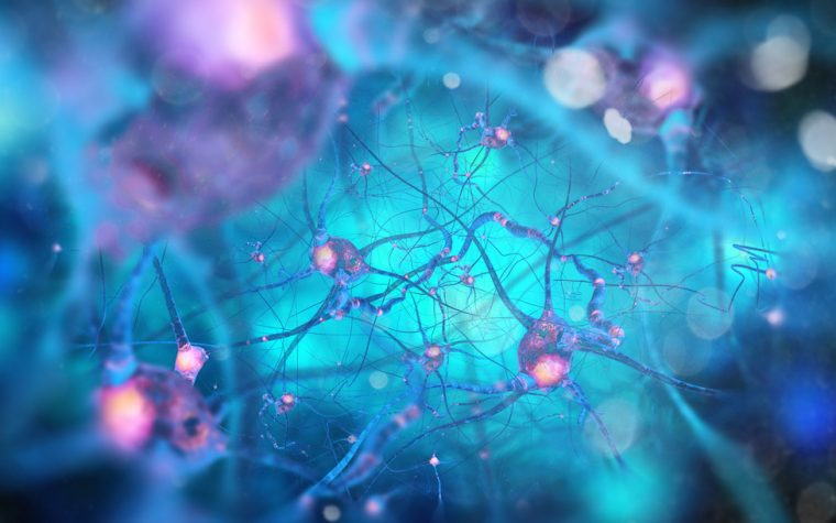 Sustained release Exendin-4 Reduces Neurodegeneration in Parkinson's Rat Model, Study Shows
