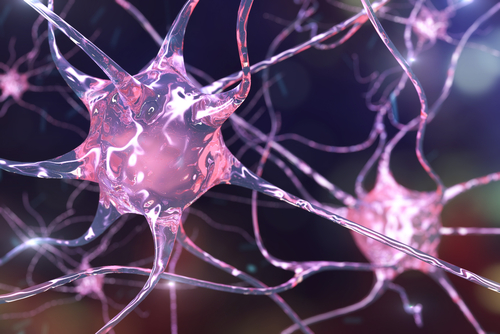 Study Reveals Alpha-synuclein's Role in Parkinson's, Lewy Body Dementia