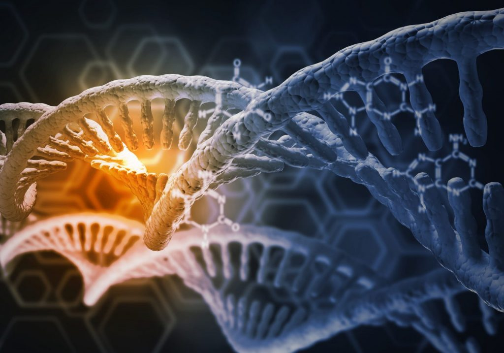 Interaction of Gene Variants Dictates Parkinson's Risk, Study Finds