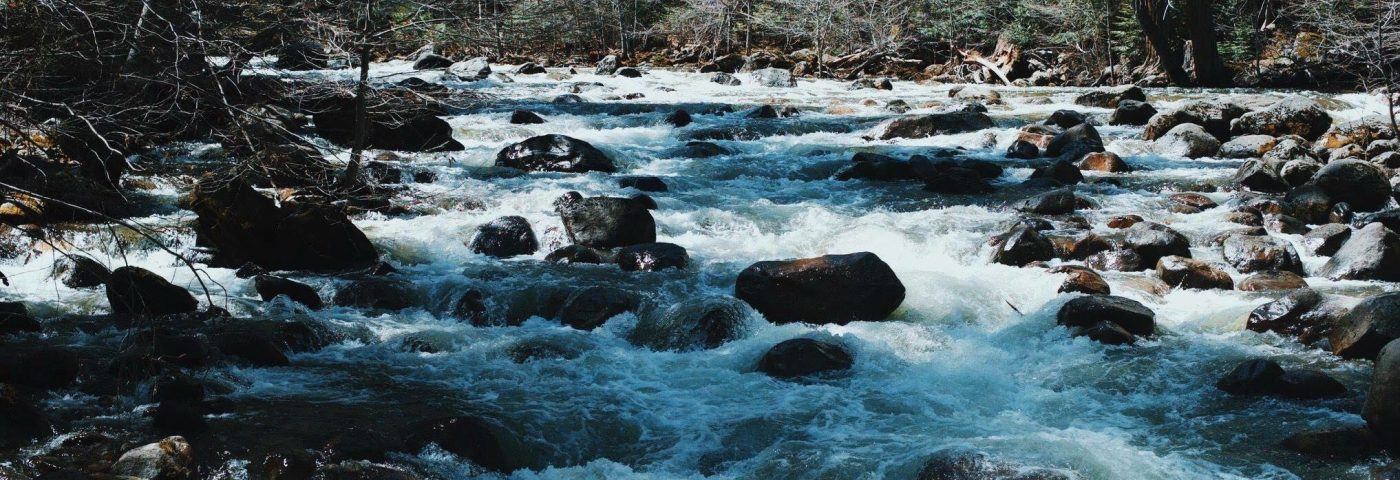 Finding the River of Life in Parkinson's Disease