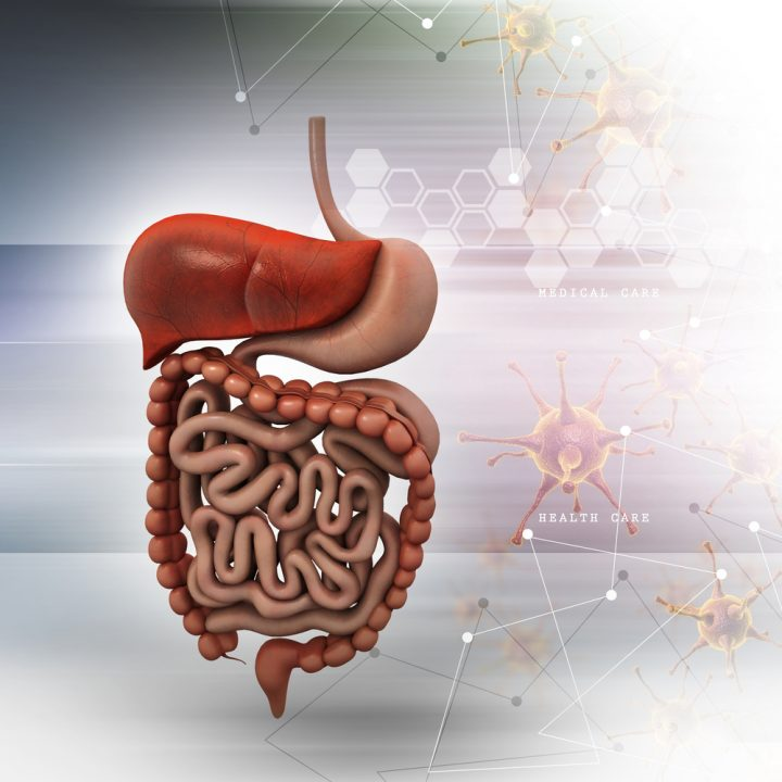 Gut Alpha-Synuclein May Be Used as Biomarker of Parkinson's, Study Suggests