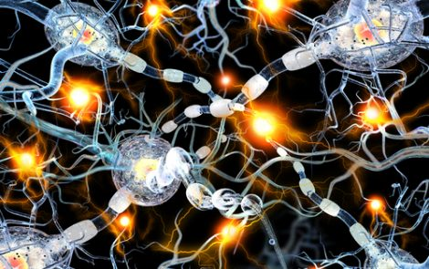 Brain Serotonin Changes May Be Early Warning Sign of Parkinson's, Study Suggests