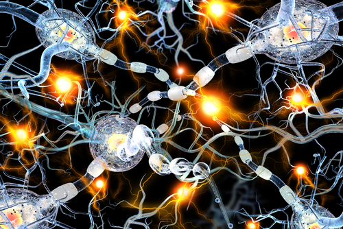 Defects in Molecular Chaperones May Help Drive Lewy Body Formation in Parkinson's, Study Finds