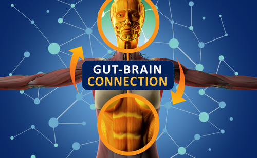 Study Shows Age-dependent Spread Of Alpha-synuclein From Gut to Brain in Mice