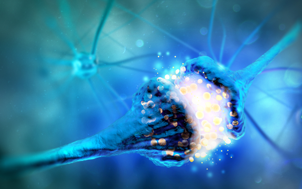 alpha-synuclein and nerve cells