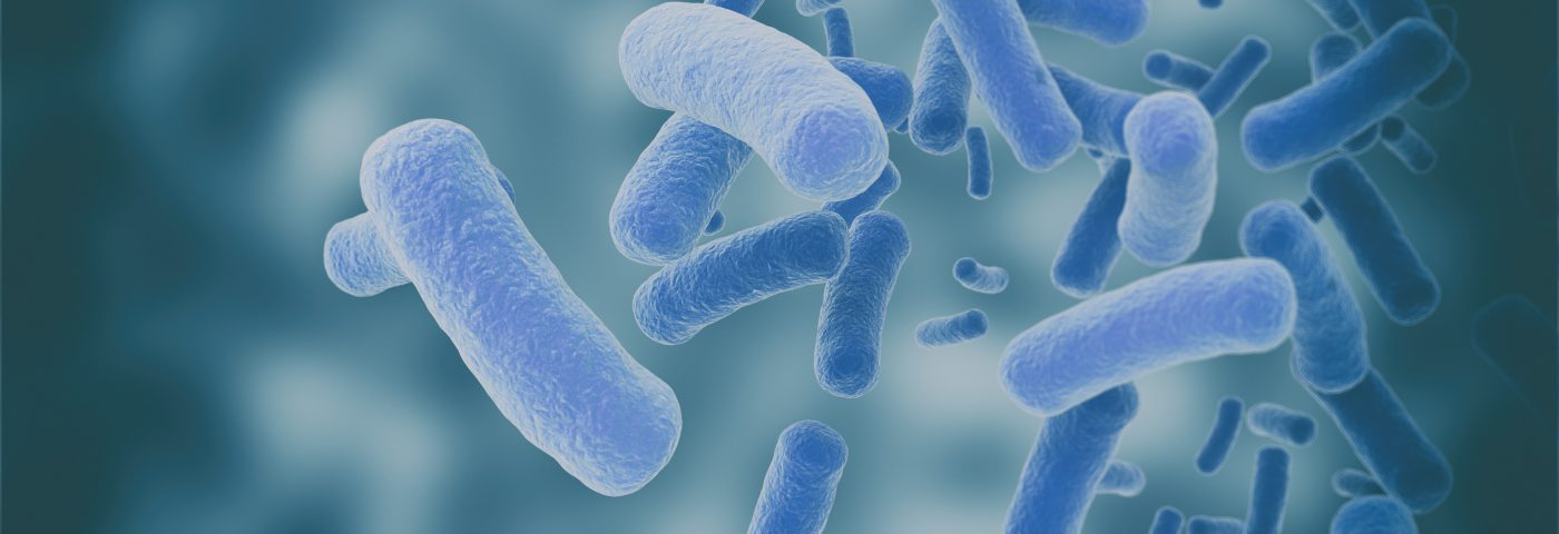 Study Links Gut Bacteria Composition to Several Markers of Parkinson's