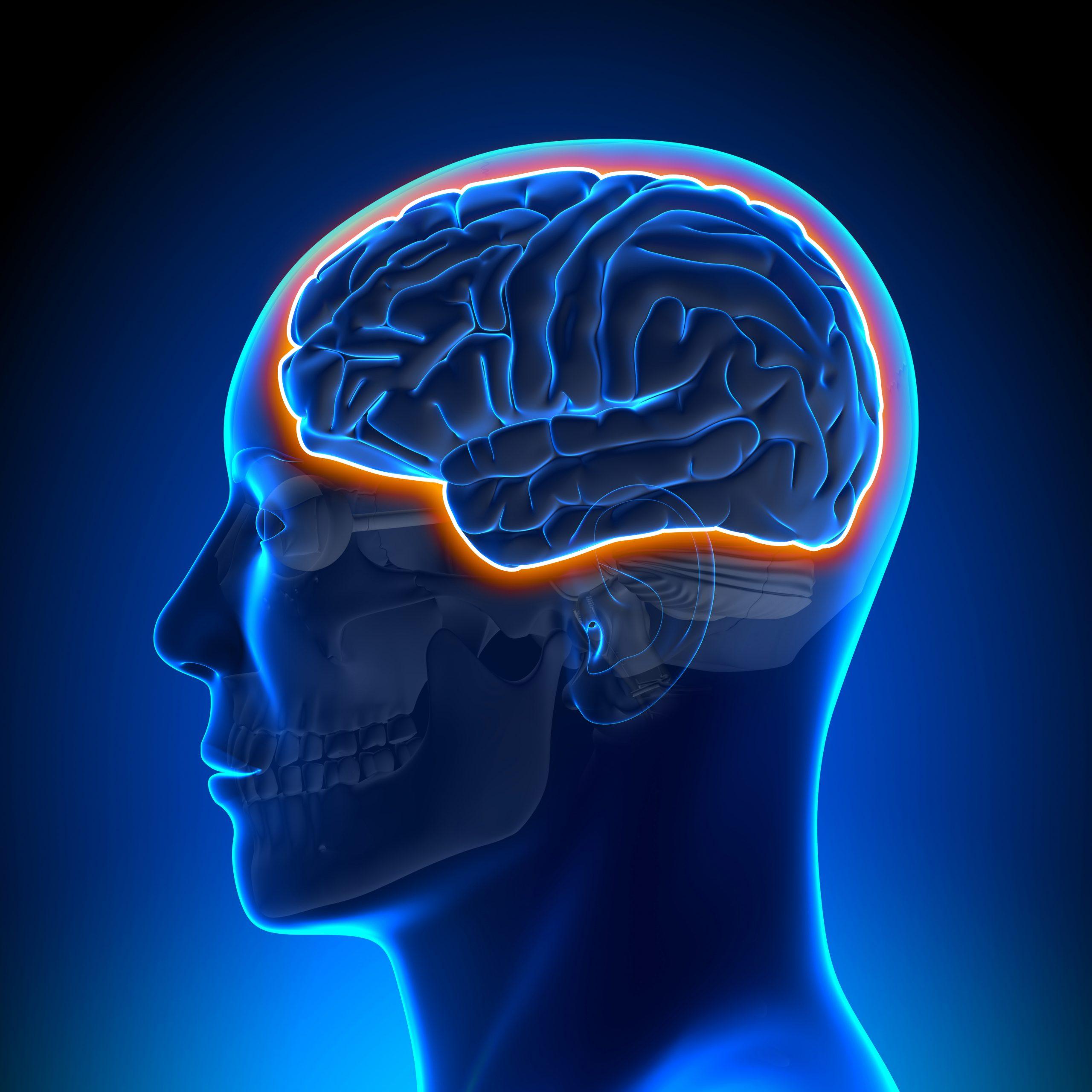 hydrogel brain stimulation Parkinsons/parkinsonsnewstoday.com/brain stimulation treatment