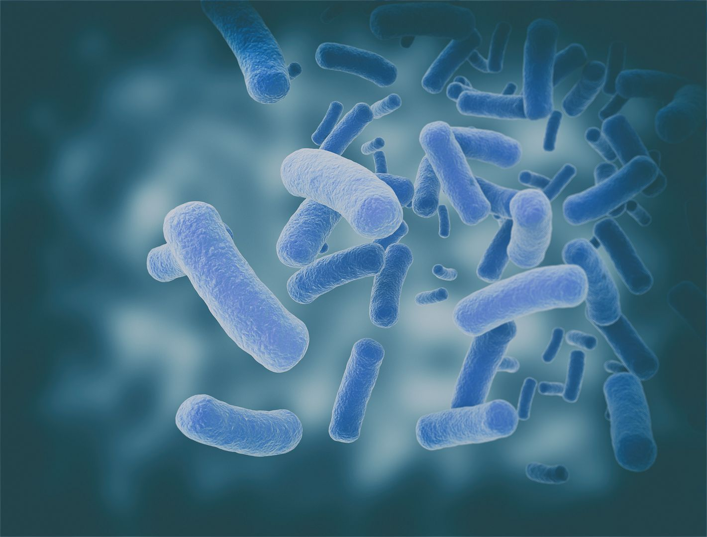 Parkinson's fecal microbiota transplant trial   Parkinson's News Today   gut bacteria and disease